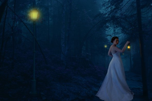 Photomanipulation: Into the Woods